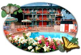 a casino travel and tours