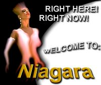 Niagara Falls Casino Connection On-Line Gaming & Sportsbooking